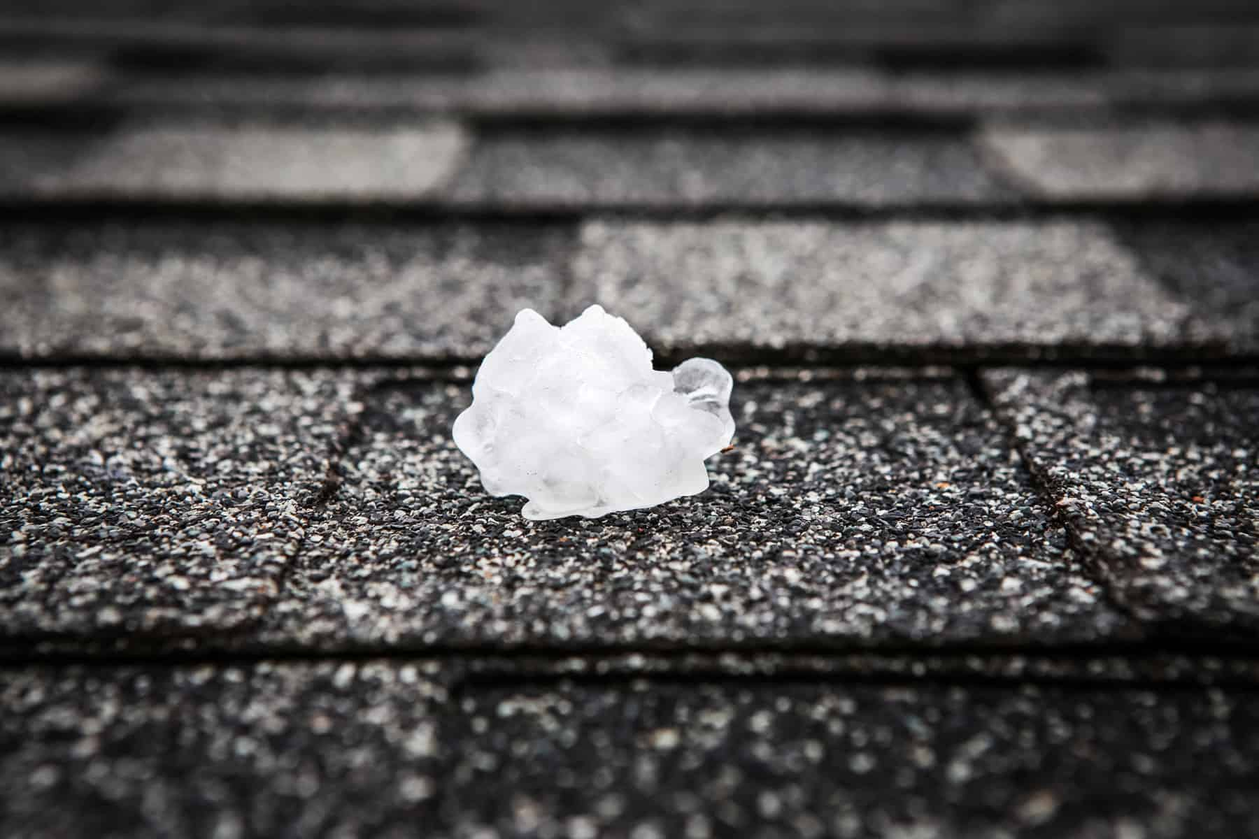 A single piece of white hail atop an asphalt shingle on a roof.
